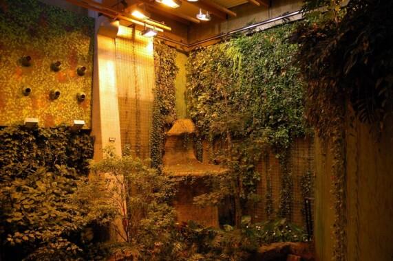 Afrykarium we Wrocławiu