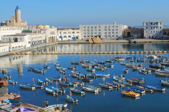 Port de pche d'Alger, Algrie