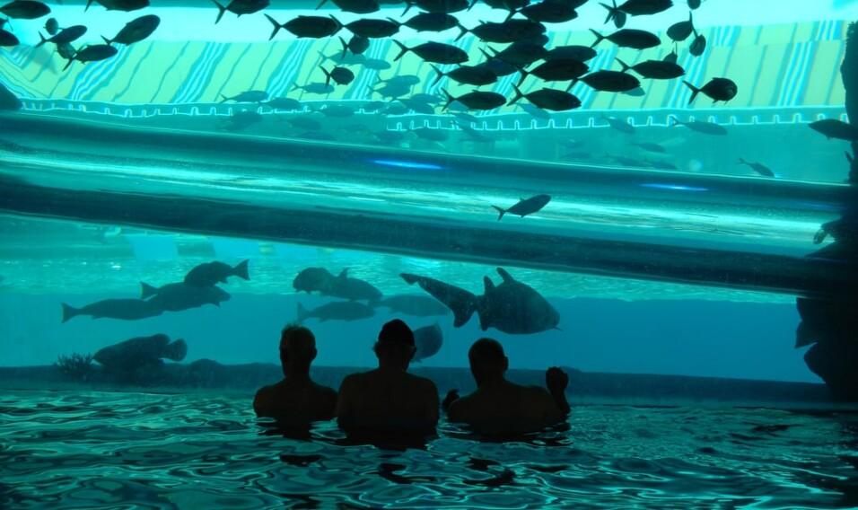 10 najdziwniejszych basenów na świecie