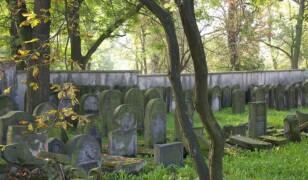 Cmentarz żydowski w Ostrowcu Świętokrzyskim