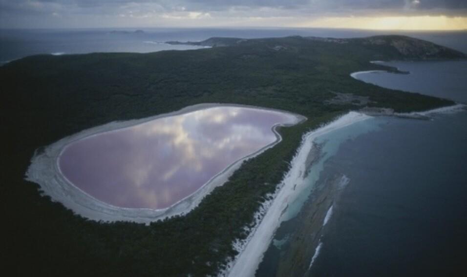 8 różowych jezior świata