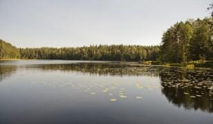 Park Narodowy Nuuksio