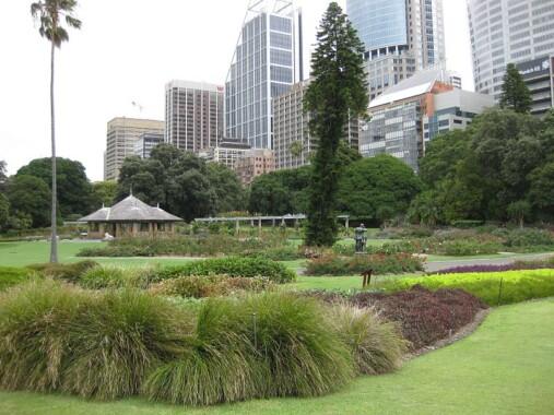 Królewski Ogród Botaniczny w Sydney