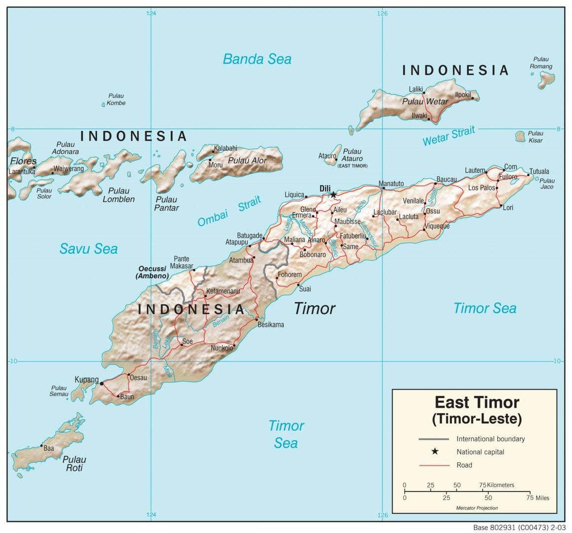 Mapa fizyczna Timoru Wschodniego