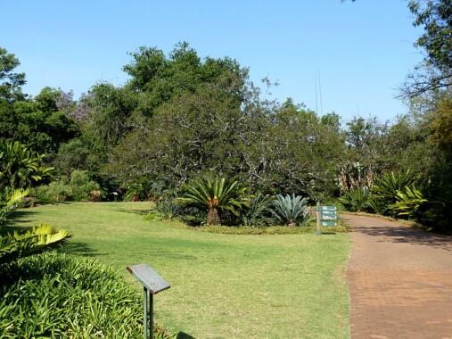 Narodowy Ogród Botaniczny w Pretorii