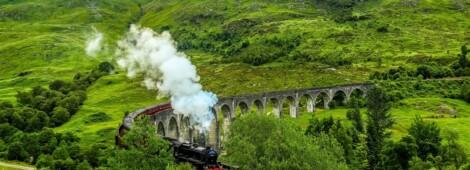 Obozy z Harrym Potterem – Zaczarowane Wakacje