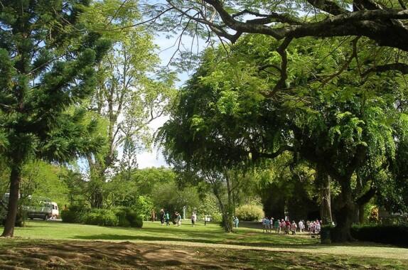 Ogród Botaniczny Dominiki