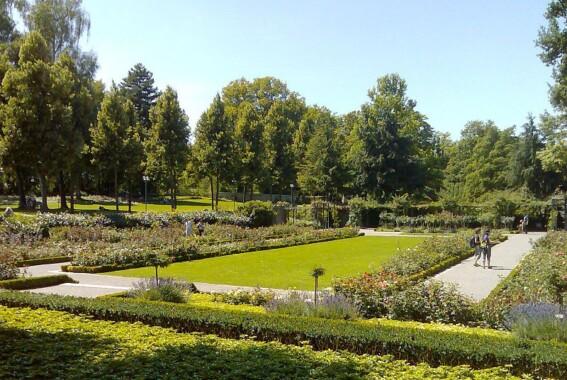 Ogród różany w Bernie