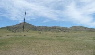 Park Narodowy Khustain Nuruu