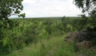 Park Narodowy Pendjari