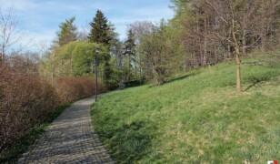 Park Szwedzki w Szczawnie-Zdroju