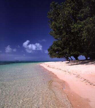 Plaża w Majuro