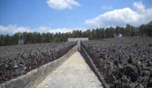 Niemiecki Obóz Zagłady w Bełżcu