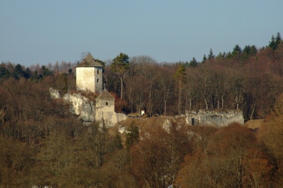 Ruiny zamku w Ojcowie