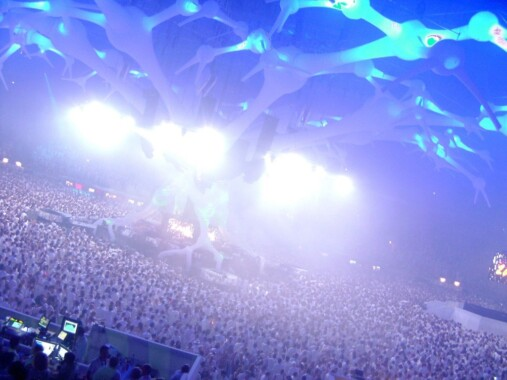 Sensation White – 2008 rok