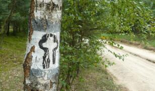 14 najciekawszych szlaków turystycznych w Polsce