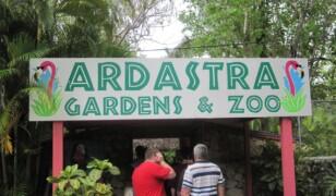 Ogród Zoologiczny Ardastra