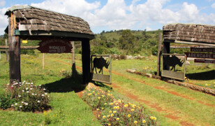 Park Narodowy Aberdare