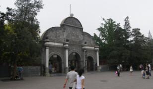 Ogród Zoologiczny w Pekinie