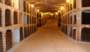 Mileștii Mici (winiarnia)