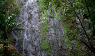 Park Narodowy La Tigra