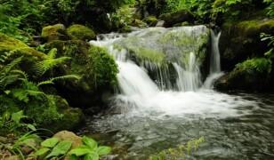 Park Narodowy Mtirala