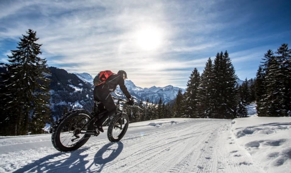 Ferie zimowe w Alpach Berneńskich: nie tylko narty!
